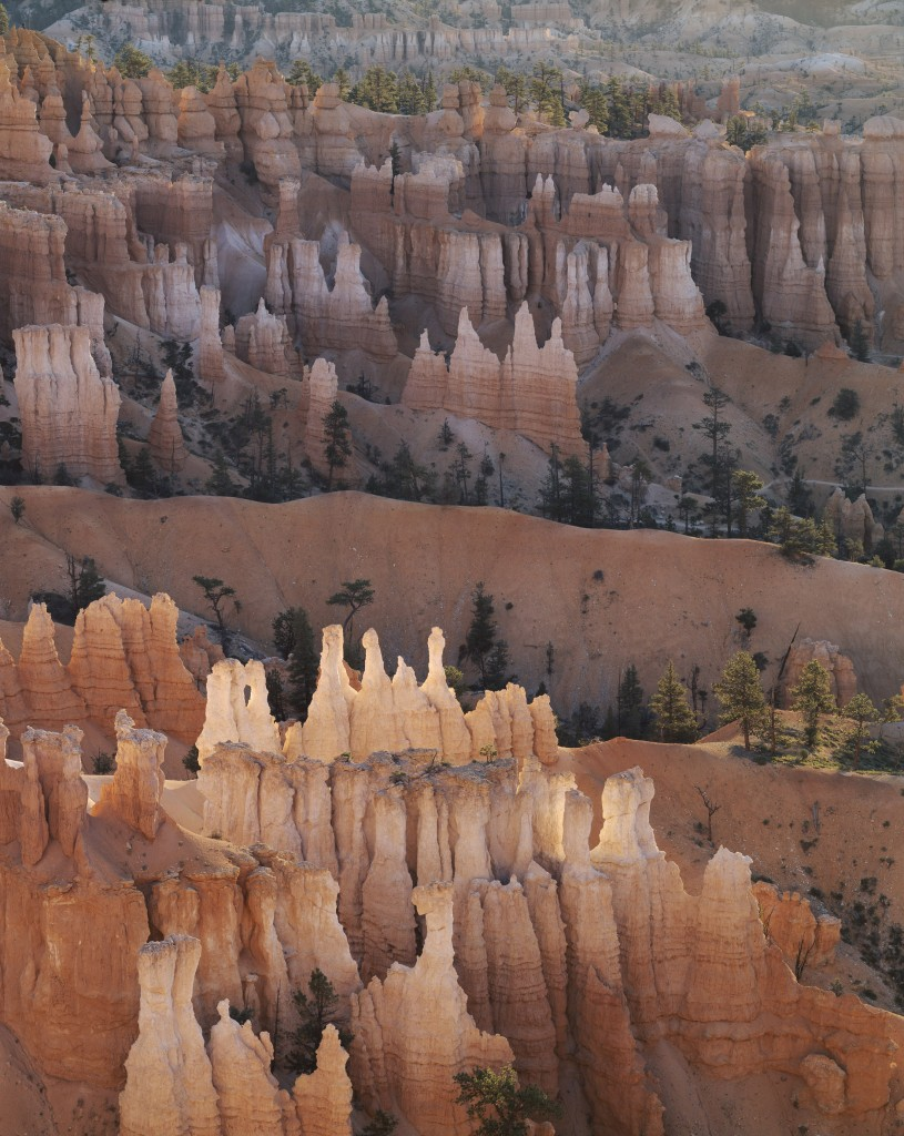 Bryce canyon at dawn, Utah, USA